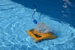 Dolphin W20 Commercial Pool Cleaner by Maytronics